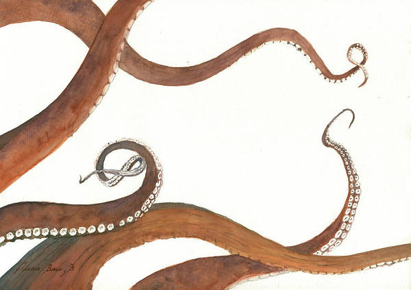 Octopus Painting - The Great White Shark And The Octopus by Juan Bosco