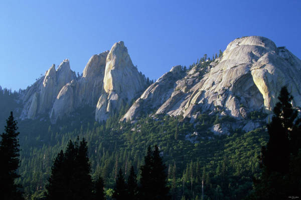 Wall Art - Photograph - The Needles by Soli Deo Gloria Wilderness And Wildlife Photography