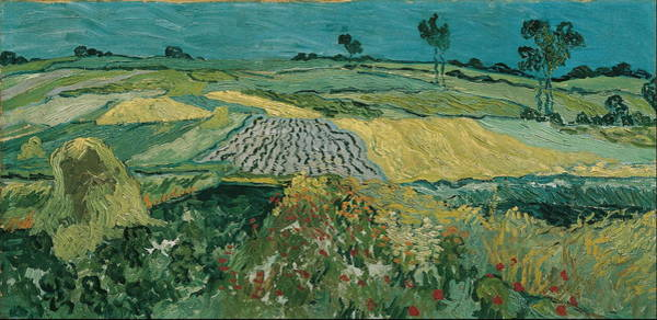 Barley Painting - The Plain Of Auvers  by Vincent Van Gogh