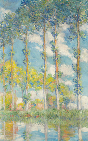 Monet Painting - The Poplars by Claude Monet