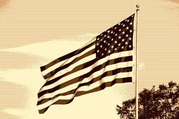Photograph - The Usa Flag by Artistic Panda