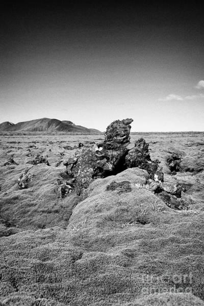 Wall Art - Photograph - thick moss covered lava boulder field Iceland by Joe Fox