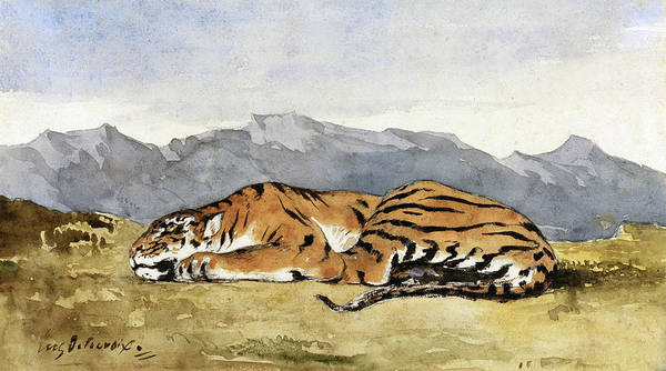 Painting - Tiger by Eugene Delacroix