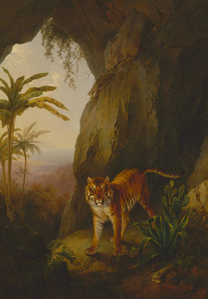 Painting - Tiger In A Cave by Jacques-Laurent Agasse
