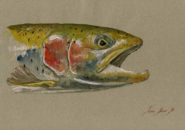 Fly Fishing Painting - Trout Watercolor Painting by Juan  Bosco