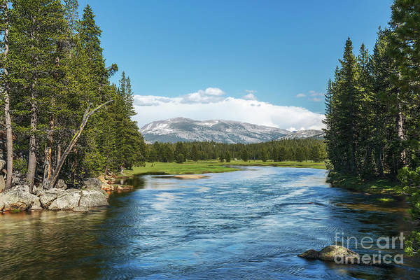 Photograph - Tuolumne River by Sharon Seaward