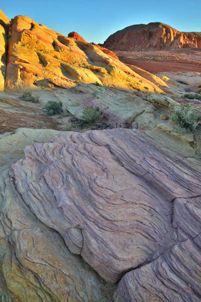 Photograph - Valley Of Fire Morning by Ray Mathis