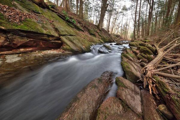 Photograph - Van Campens Brook by Dawn J Benko