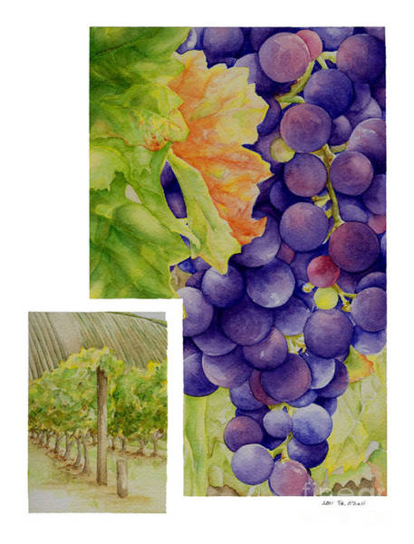 Vino Painting - Vineyard4 by TR O'Dell