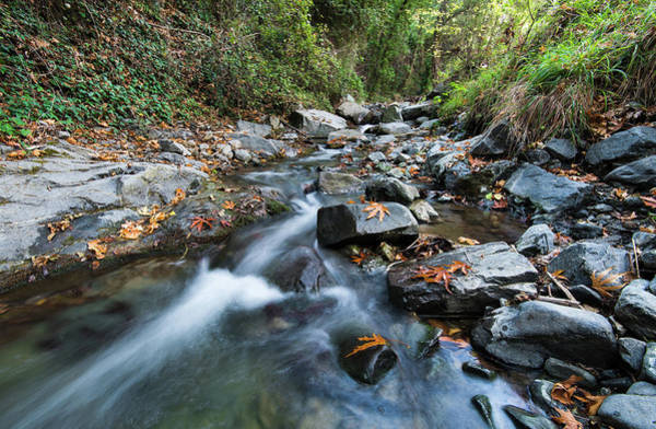 Outdoor Wall Art - Photograph - Water Stream Flowing In The River In Autumn by Michalakis Ppalis