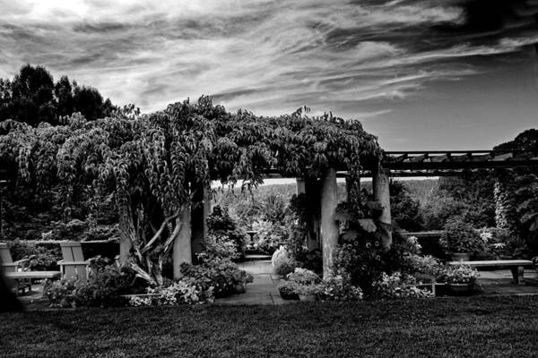 Photograph - Wave Hill Pergola by Jessica Jenney