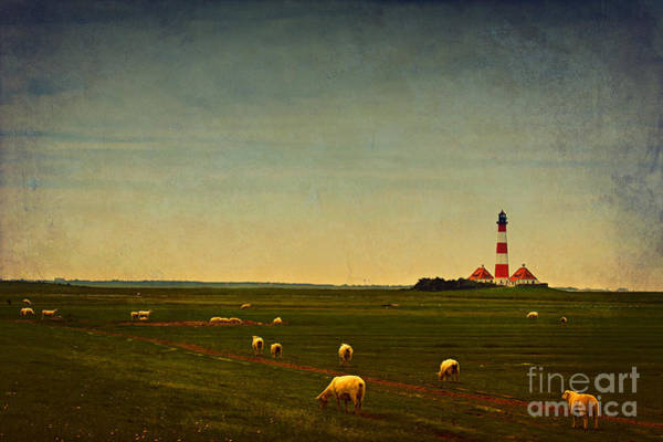 Wall Art - Photograph - Westerhever Lighthouse by Angela Doelling AD DESIGN Photo and PhotoArt