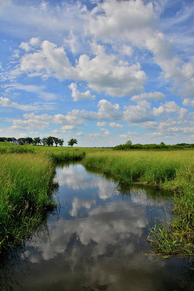 Photograph - Wetland Reflection In Glacial Park by Ray Mathis
