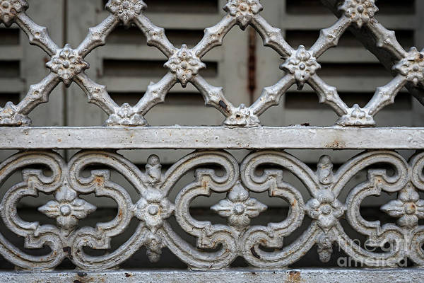 Wall Art - Photograph - Window Grill In Toulouse by Elena Elisseeva