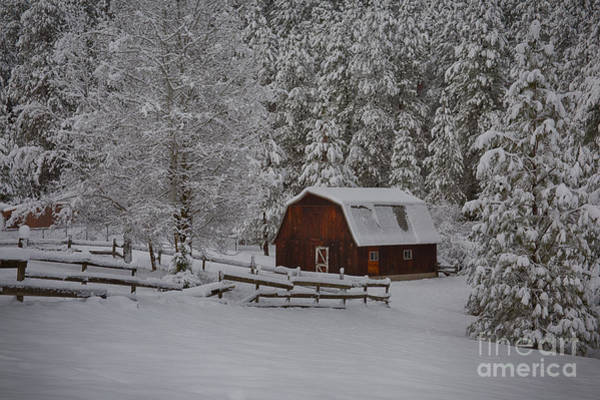 Wall Art - Photograph - Winter Barn by Idaho Scenic Images Linda Lantzy