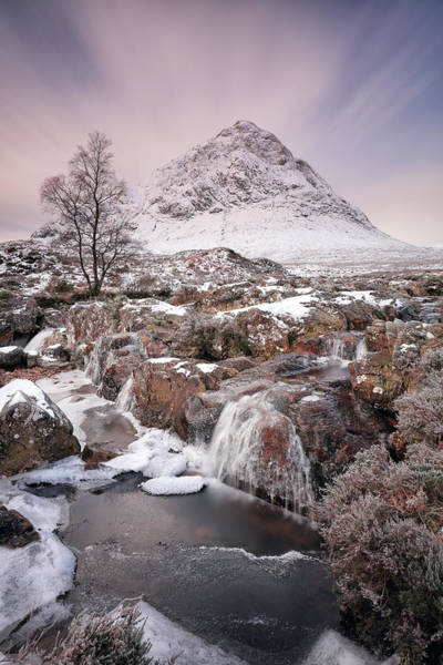 Photograph - Winter Landscape by Grant Glendinning