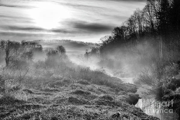 Photograph - Winter Mist by Thomas R Fletcher