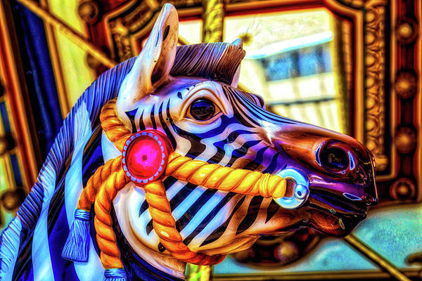 Photograph - Zebra Ride by Garry Gay