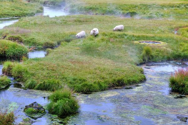 Hot Springs Photograph - Landmannalaugar - Iceland by Joana Kruse