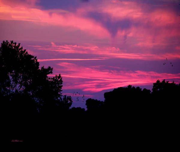 Photograph - 2015-05-02  Sunset by Ericamaxine Price