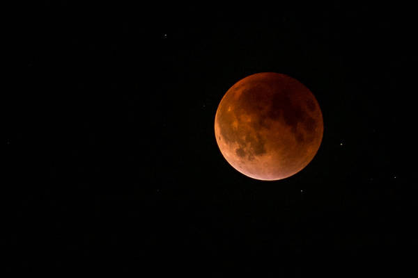 Photograph - 2015 Blood Harvest Supermoon Eclipse by Terry DeLuco