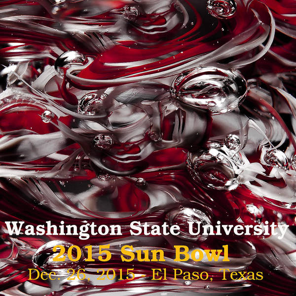 Photograph - 2015 Sun Bowl - Wsu by David Patterson