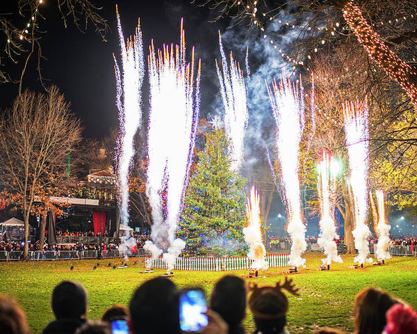 Photograph - 2016 Boston Common Christmas Tree Lighting Boston Ma by Toby McGuire