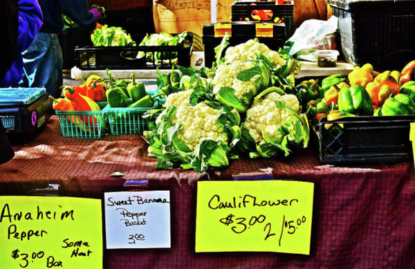 Photograph - 2016 Monona Farmers' Market End Of The Season by Janis Nussbaum Senungetuk
