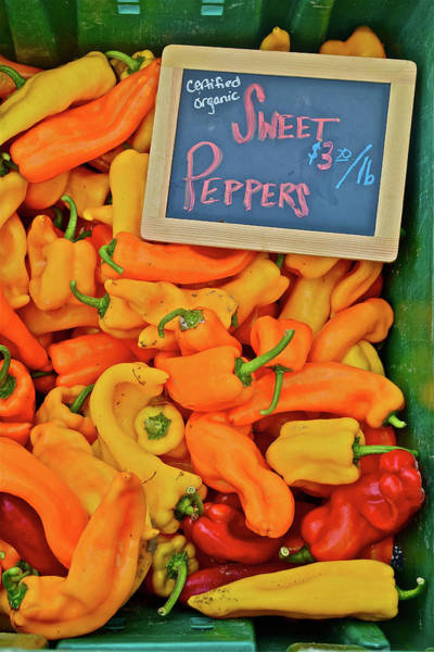 Photograph - 2016 Monona Farmers' Market Sweet Peppers by Janis Nussbaum Senungetuk
