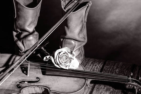 Photograph - 209 .1841 Violin By Jean Baptiste Vuillaume Bw by M K Miller