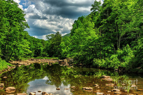 Wall Art - Photograph - Williams River Spring by Thomas R Fletcher