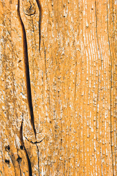 Wall Art - Photograph - Wood Background by Tom Gowanlock