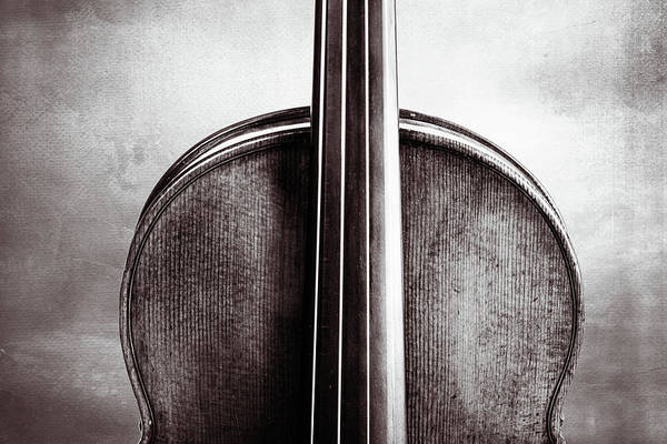 Photograph - 211 .1841 Violin By Jean Baptiste Vuillaume Bw by M K Miller