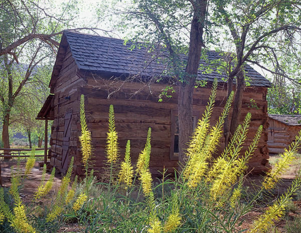 Photograph - 213018 Historic Ranch Building by Ed Cooper Photography