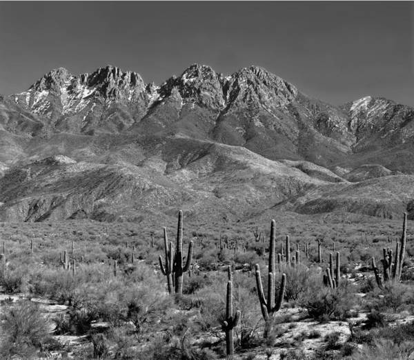 Photograph - 213560 Four Peaks, Superstition Mountains Az by Ed Cooper Photography