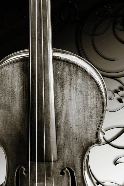Photograph - 218 .1841 Violin By Jean Baptiste Vuillaume Bw by M K Miller