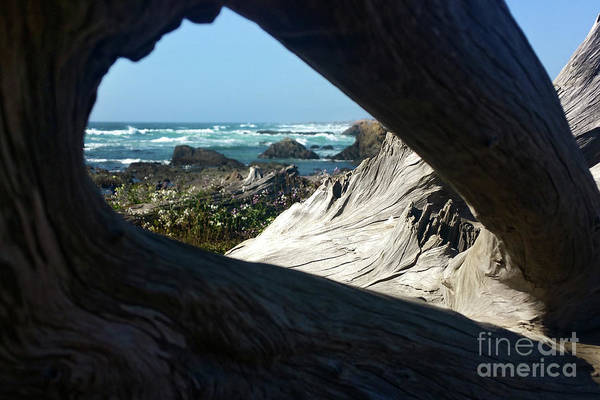 Photograph - California Coast Glass Beach by Gregory Dyer