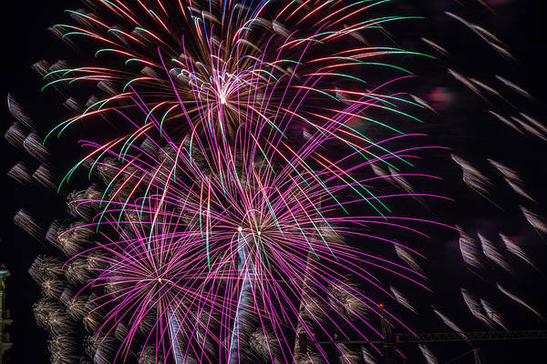 Photograph - Fireworks 2015 Sarasota 16 by Richard Goldman