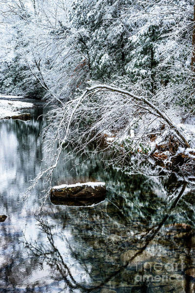 Photograph - Winter Along Cranberry River by Thomas R Fletcher