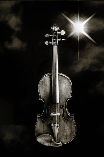 Photograph - 225 .1841 Violin By Jean Baptiste Vuillaume Bw by M K Miller