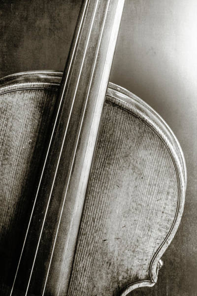 Photograph - 229 .1841 Violin By Jean Baptiste Vuillaume Bw by M K Miller
