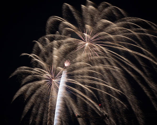 Photograph - Fireworks 2015 Sarasota 15 by Richard Goldman