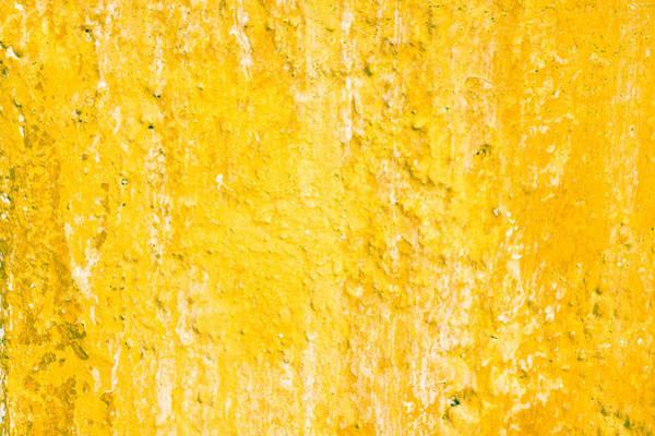Closeup Wall Art - Photograph - Stone Wall by Tom Gowanlock