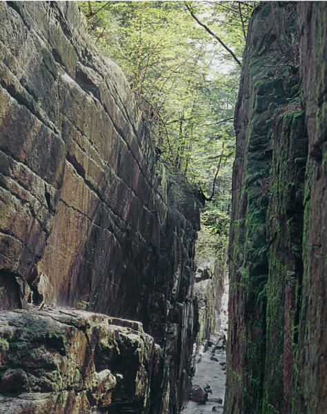 Photograph - 235604 Flume Gorge by Ed Cooper Photography