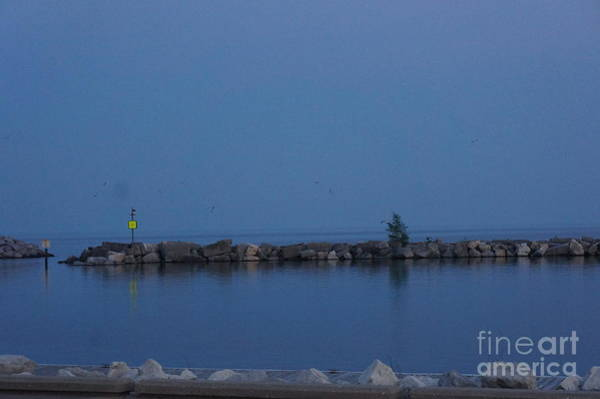 Painting - Racine Coastal Seascape - Michigan Lake In Wisconsin By Adam Asar by Celestial Images