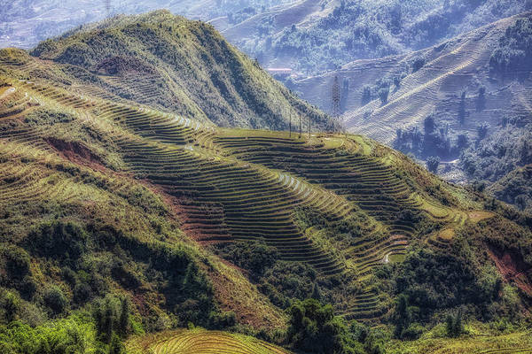Terrace Photograph - Sapa - Vietnam by Joana Kruse