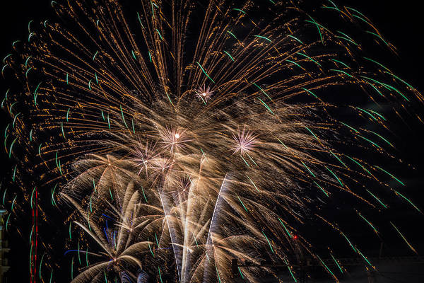 Photograph - Fireworks 2015 Sarasota 13 by Richard Goldman