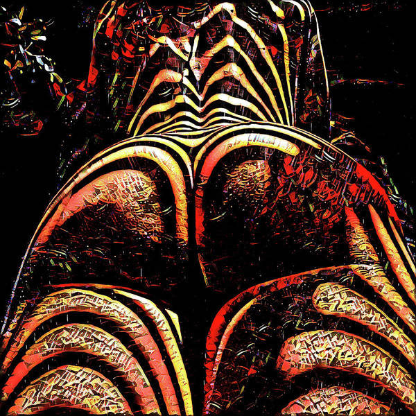 Digital Art - 2574s-res Zebra Striped Booty Rendered As Abstract Oil Painting by Chris Maher