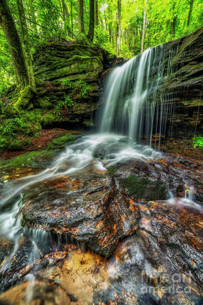 Photograph - West Virginia Waterfall by Thomas R Fletcher