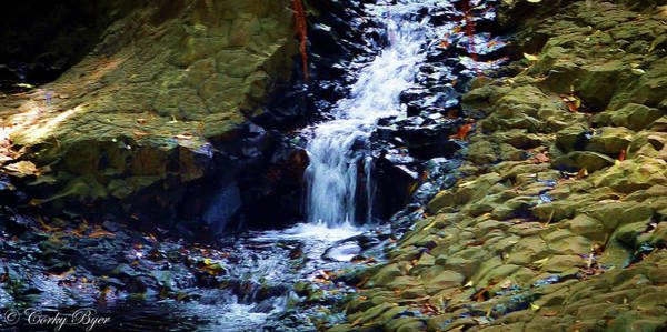 Wall Art - Photograph - Iao Valley Stream Maui by Corky Byer
